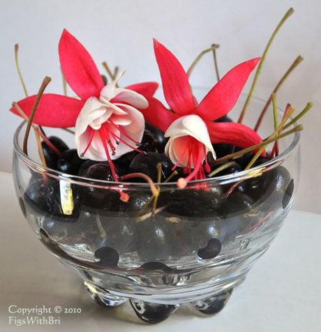 jingle bells fuchsia with ripe fuchsia berries in glass bowl