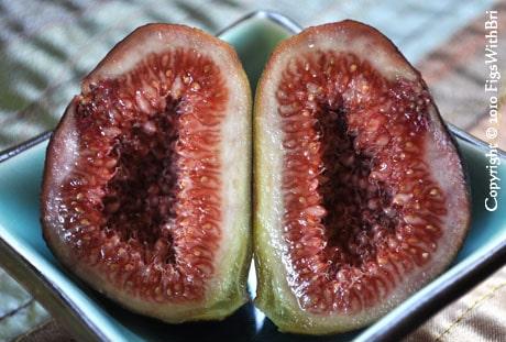 dark purple fig sliced in half